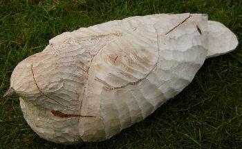 John Adamson - Wood Sculptor: Hatfield06