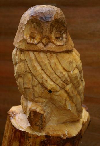 Wyke Owl