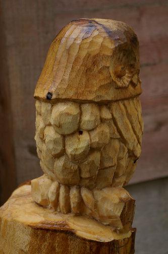 wyke-owl-008